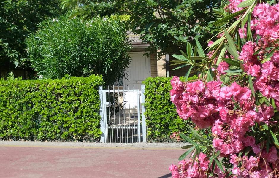 bungalow in affitto per vacanze al mare nella riviera adriatica ... - Piccolo Giardino Al Mare